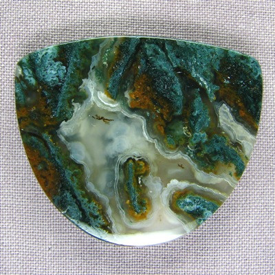 Ramshorn Plume Agate CAb